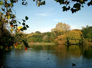 Hampstead No 2 Pond